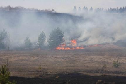 Первый лесной пожар потушили под Красноярском