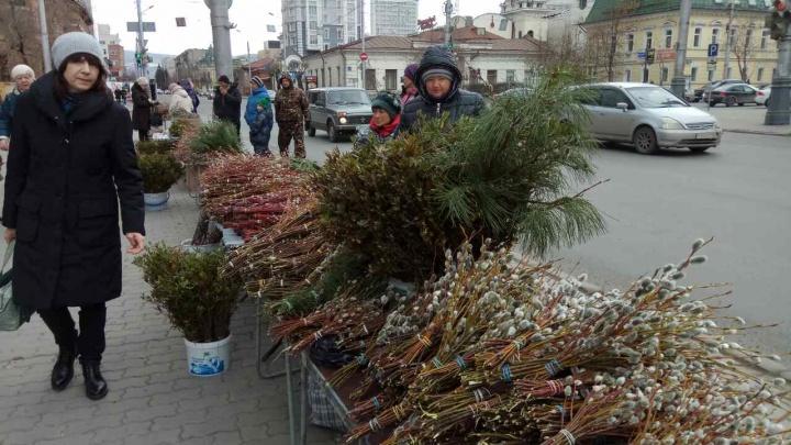Центр Красноярска заполонили торговцы вербой и багульником (фото)