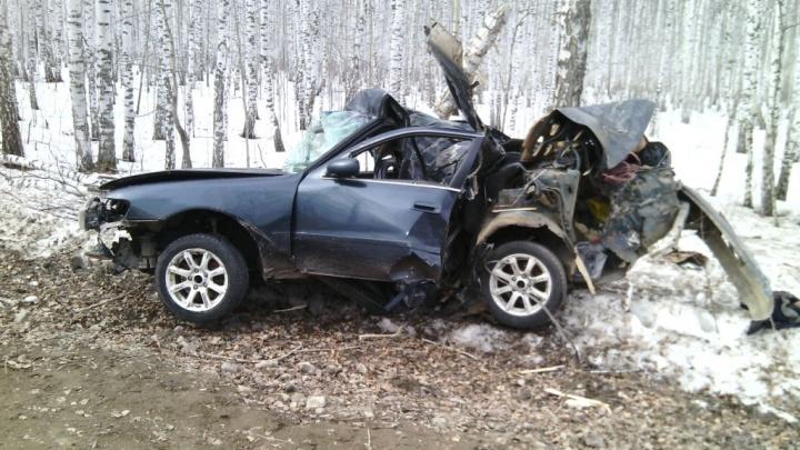 Две пассажирки погибли в страшной аварии с деревом на трассе (фото)