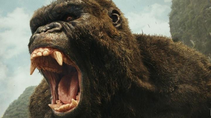 Масштабный фильм про Кинг-Конга стал лидером проката в Красноярске и обогнал кровавого «Логана»