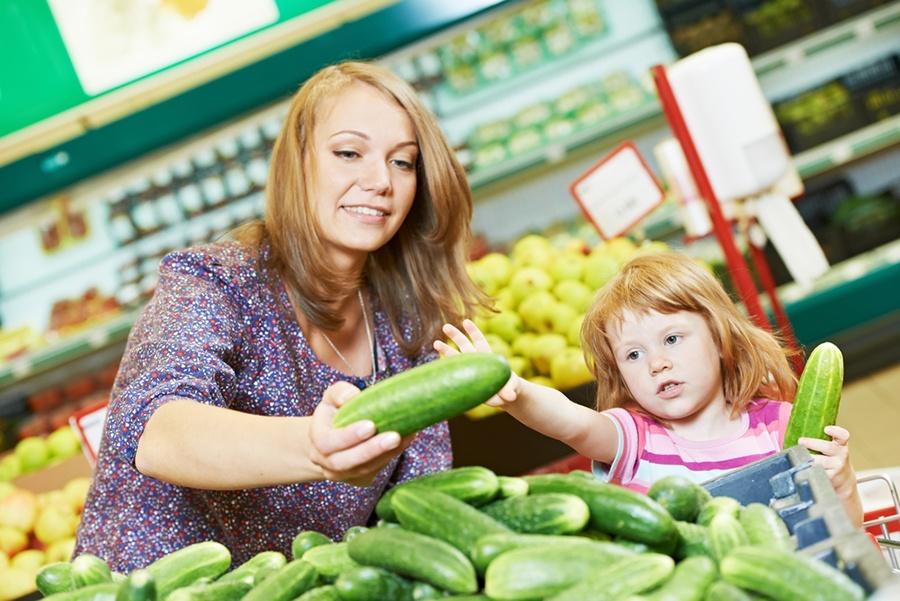 Компания изСтаврополя строит 30 гектар теплиц под Шарыпово для выращивания овощей