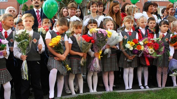 Больше 300 школьников Красноярска родители перевели учиться на дому