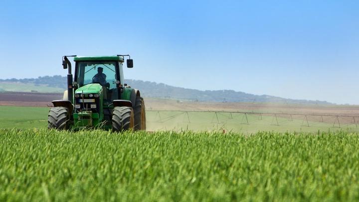 Фермер-депутат подозревается в присвоении 15 из 21 млн гранта от правительства на развитие хозяйства