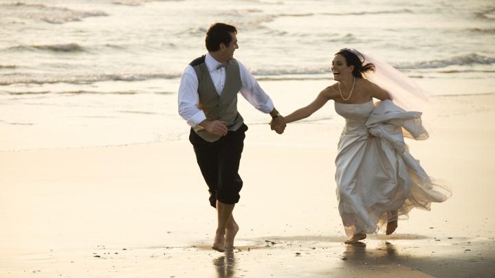 Молодоженам Новосибирска дали рекомендации по подготовке свадебной церемонии