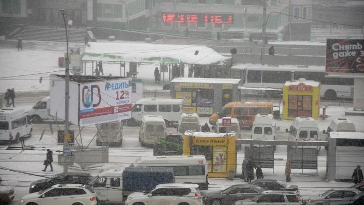 Москвичи согласились давать советы по развитию транспорта в Новосибирске за 19 миллионов