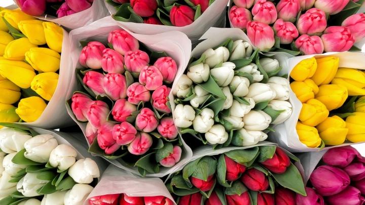 В «АмурОпт» прямым рейсом из Сочи привезено более 80 000 тюльпанов к 8 Марта