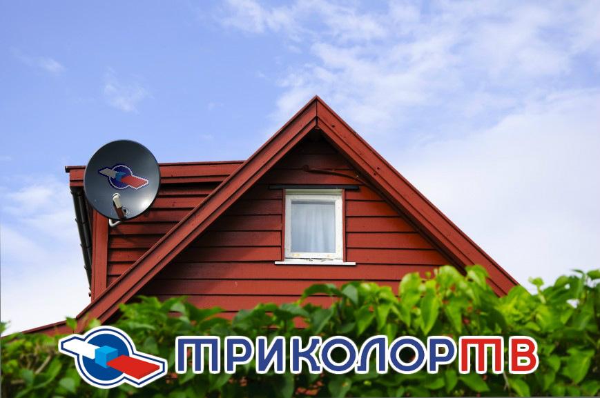 Тв онлайн новосибирск прямой эфир