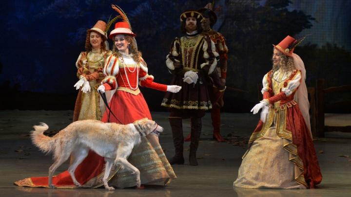 Новосибирцы вынудили НОВАТ показывать больше романтических балетов