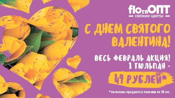 14 февраля «FLOraОПТ» будет продавать тюльпаны за 49 рублей