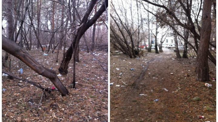 Лес возле горбольницы завалили мусором