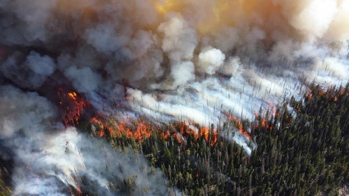 Из-за лесных пожаров могут пострадать 105 сел, поселков и деревень области