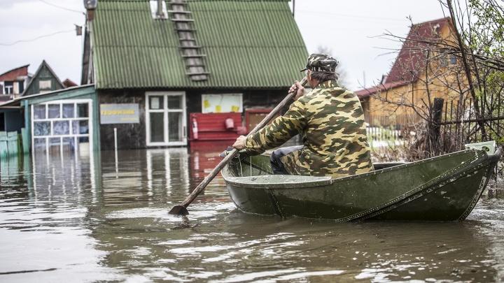 Синоптики назвали сроки начала паводка в Новосибирской области
