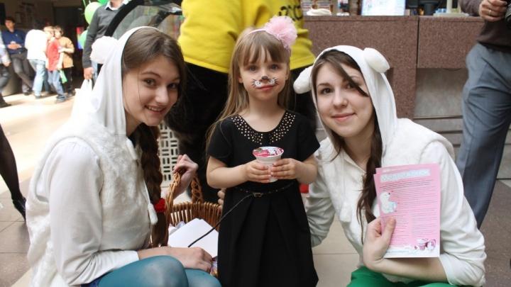 В Новосибирске впервые появились детские молочные продукты «Медвежонок» и «Милочка»