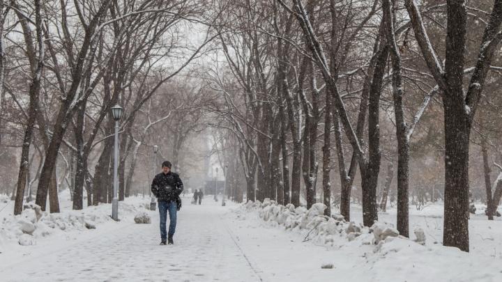 Синоптики рассказали, когда в Новосибирске снова потеплеет