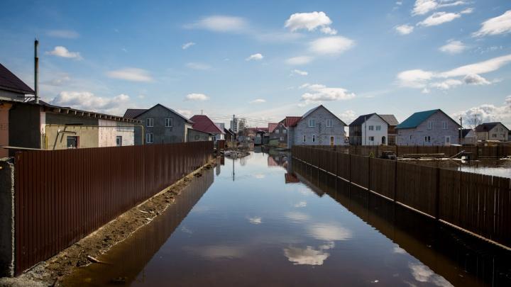 Поселок под Новосибирском за ночь ушел под воду