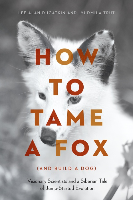 Обложка книги «How to Tame a Fox (and Build a Dog): Visionary Scientists and a Siberian Tale of Jump-Started Evolution»