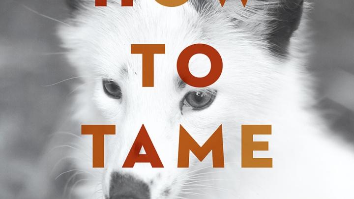 В США выпустят книгу о секретах выведения домашних лис в Академгородке