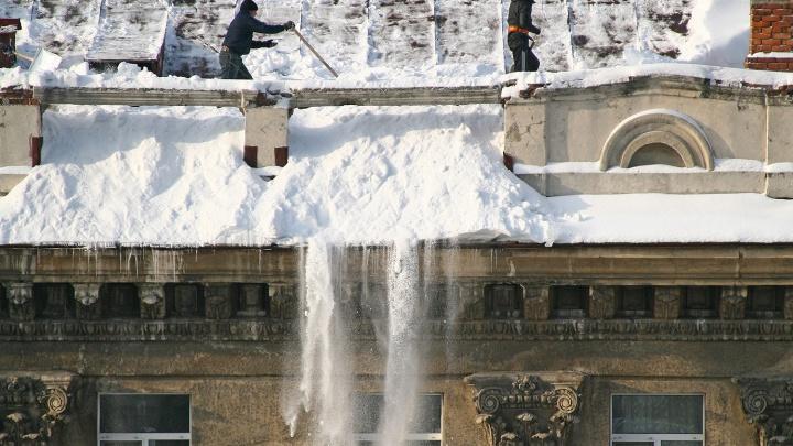 Коммунальщиков отправили ворошить снег на газонах