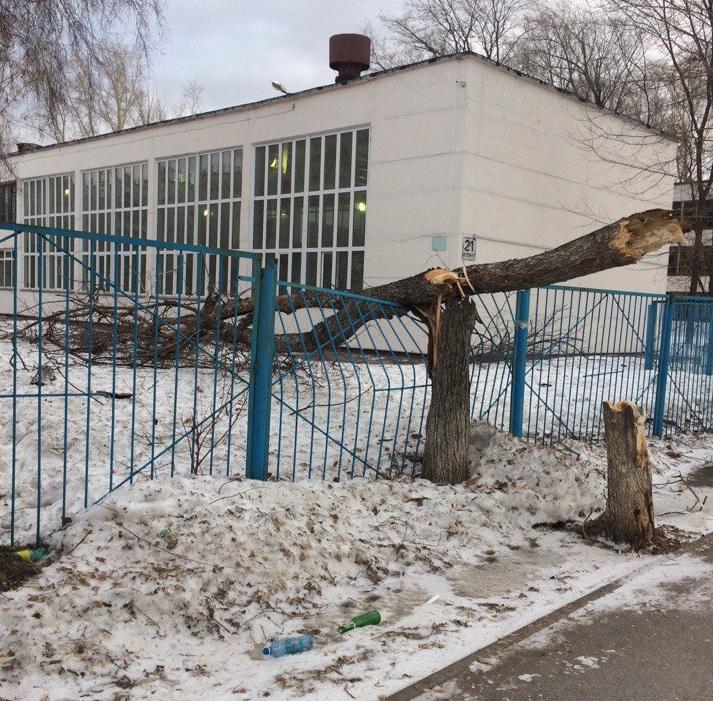 Упавшее дерево погнуло забор<br>