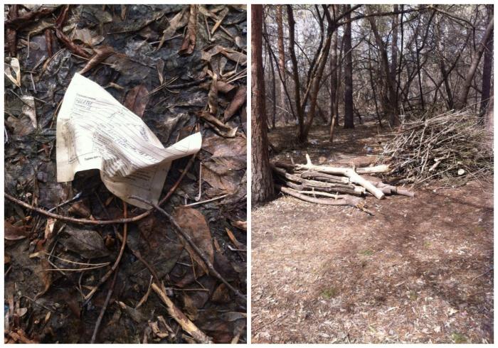 По словам местных жителей, большая часть леса еще завалена больничным мусором