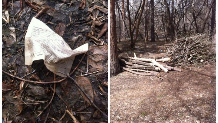 Лес у горбольницы почистили от мусора после публикации на НГС