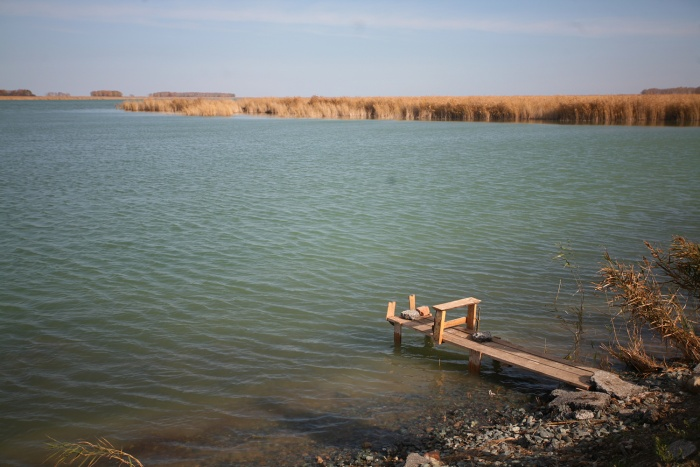 На развитие «озерного кластера» в Новосибирской области потратят больше 150 млн