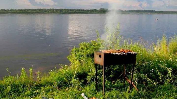 Новосибирцам предложили идеальные составляющие для пикника по низким ценам