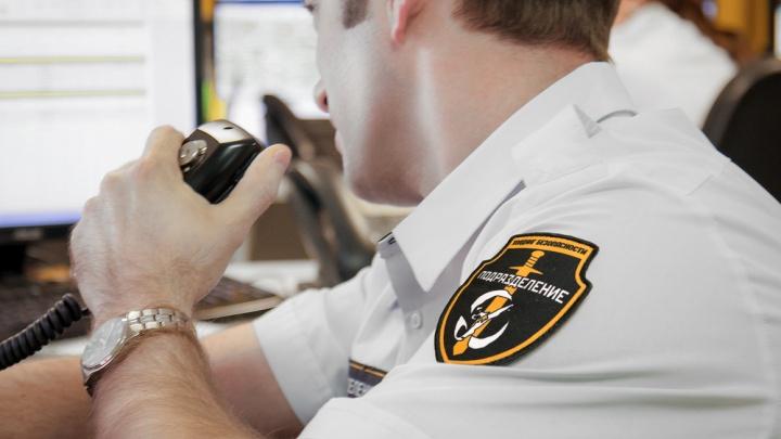 Современные охранные сервисы помогут защитить бизнес