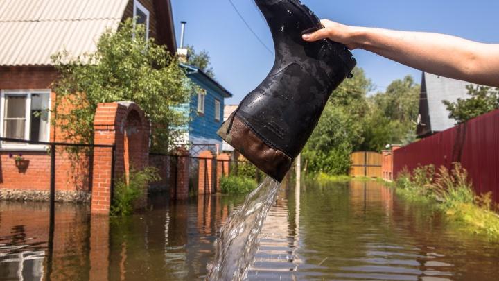 Власти предупредили о подтоплении первых дач в Новосибирске