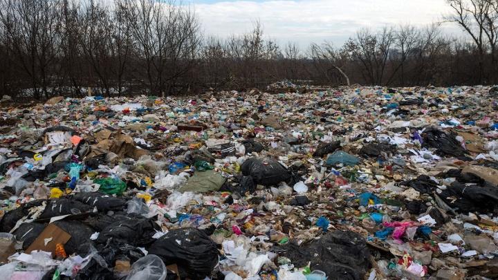 Как избавить Сибирь от мусора и очистить воздух в мегаполисах