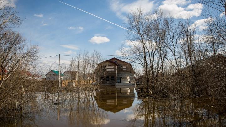 МЧС нашло способ спасти от потопа коттеджи под Новосибирском