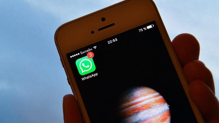 Полиция разыскивает авторов очередной панической рассылки по WhatsApp