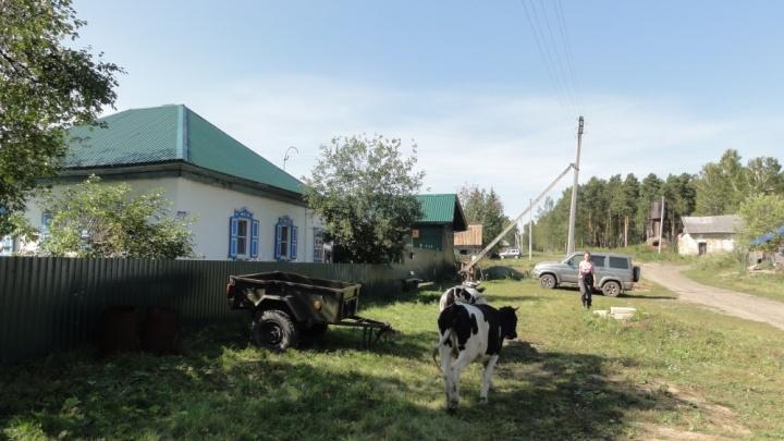 В Тогучинском районе продается усадьба и магазин без посредников