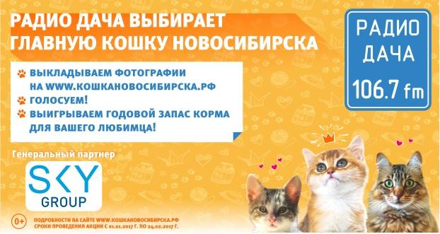 «Радио Дача 106,7FM» выбирает Главную кошку Новосибирска — 2017