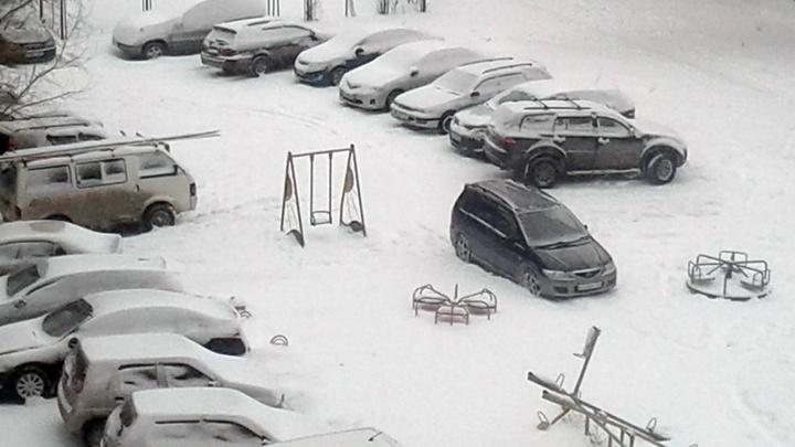 Чиновник назвал рубрику «Я паркуюсь как чудак» на НГС единственным наказанием для автохамов