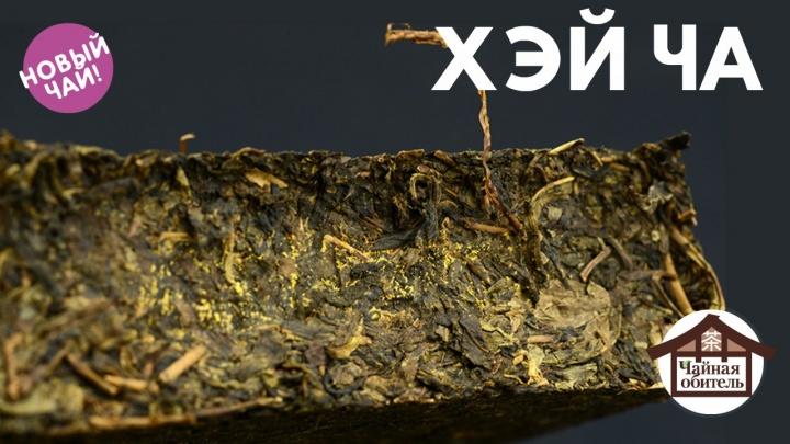 Золотая патина легендарного чая стала доступна новосибирцам