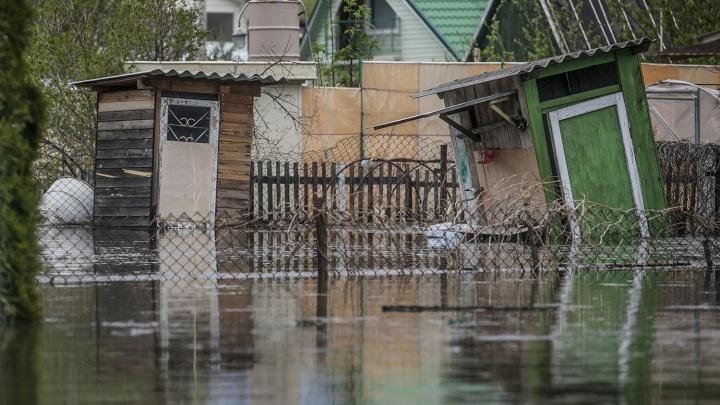 МЧС предложило новосибирцам застраховать дачи от мощного паводка