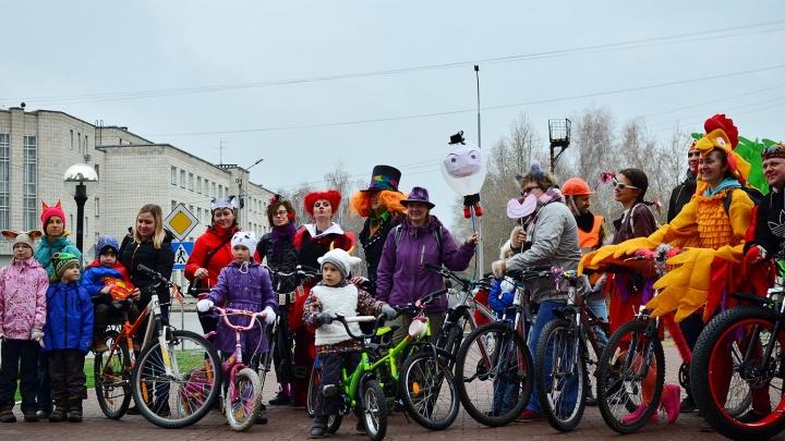 По Академгородку проехали велосипедисты в противогазах и костюмах из «Алисы в Стране чудес»