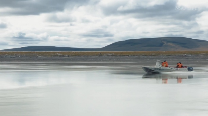 Скриншот из фильма «Арктика. На краю Земли», канал NSU LIFE