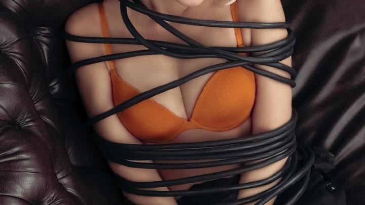 Новосибирский провайдер выпустил эротический календарь с красавицами в проводах