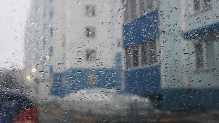 В Новосибирске пошел первый дождь