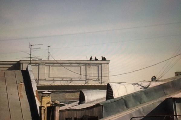 Подростки забрались на крышу НГУАДИ по соседней, полагают в университете