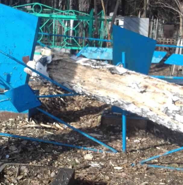 Поваленное дерево на Заельцовском кладбище