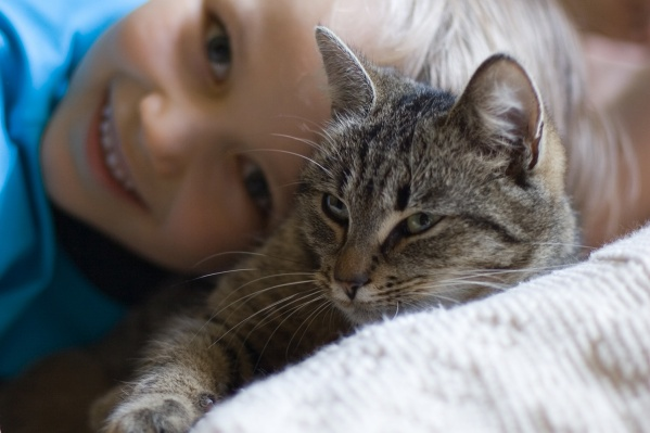 Ребенок ищет своего кота в Академгородке
