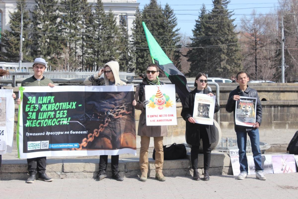 Дюжина новосибирцев вышла протестовать против цирка в Первомайский сквер (фото)