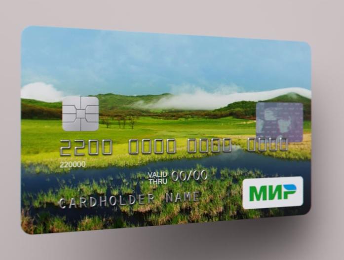 Бюджетников Красноярска переводят наплатежные карты «Мир»
