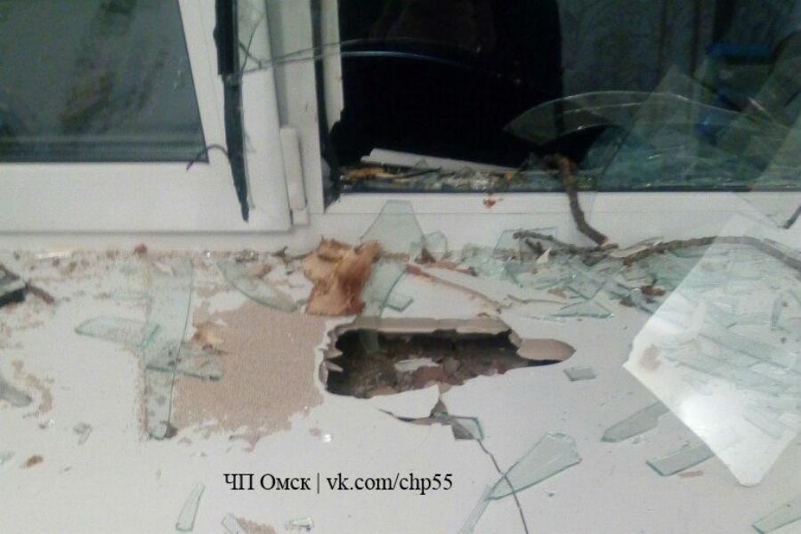 ВОктябрьском округе Омска упавшее дерево разбило несколько окон