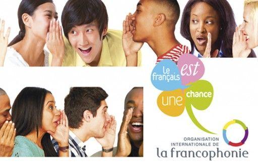 Как я начала учить французский – личный опыт!