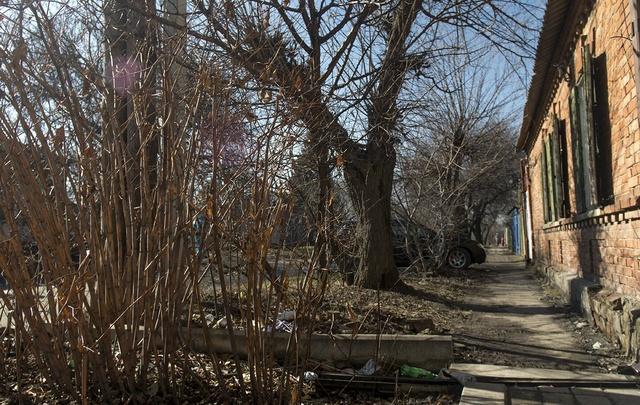 Заявки на благоустройство подали жители 224 дворов Ростовской области