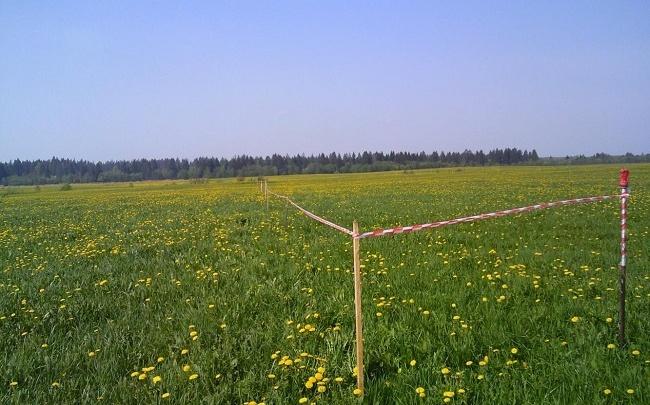 Многодетным семьям в Самарской области будут бесплатно выделены земельные участки